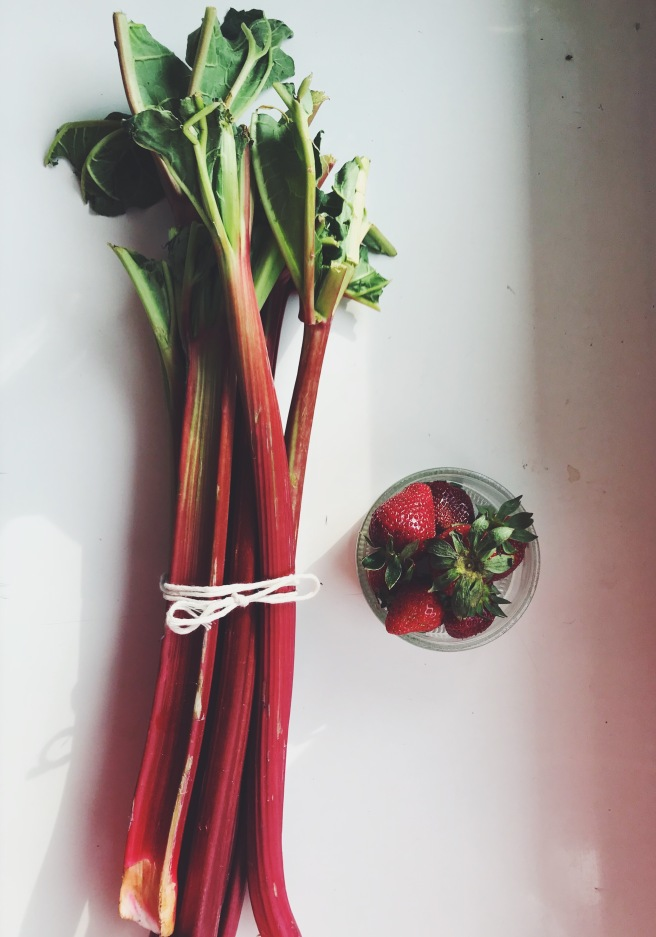 rabarbar fruits owoce truskawki
